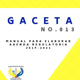 Gaceta 13